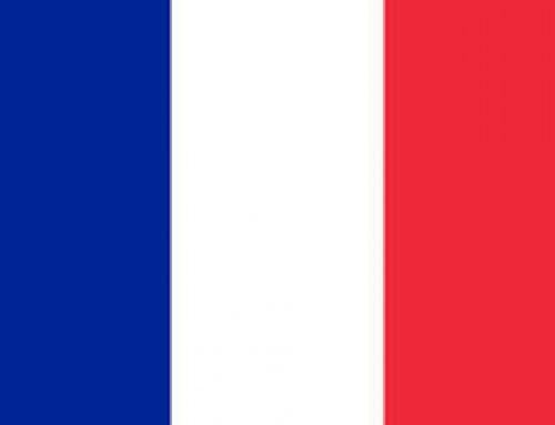 Psychothérapie et consultations en français a Vasrovie